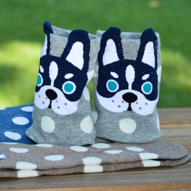 Veselé ponožky s pejsky - 5 variant 1