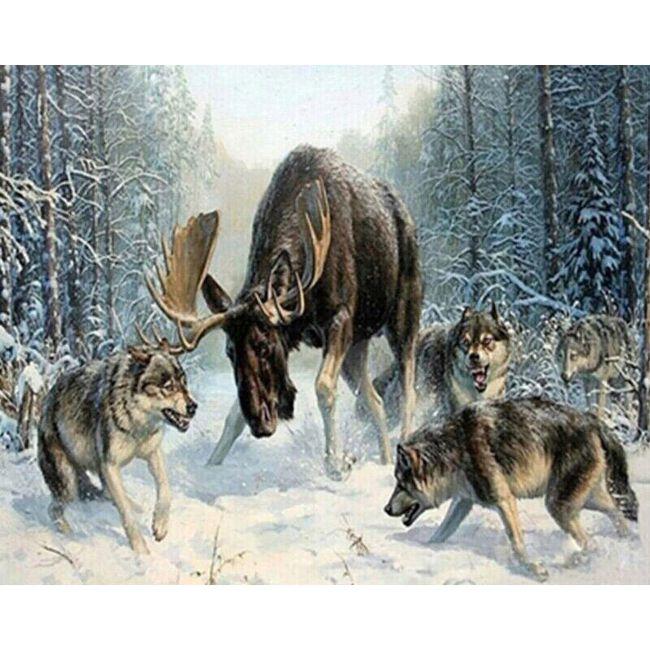 Obraz s bojujícími vlky - vymaluj si sám 1