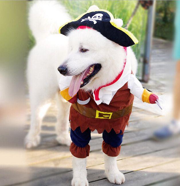 Legrační psí kostým - 8 variant 1