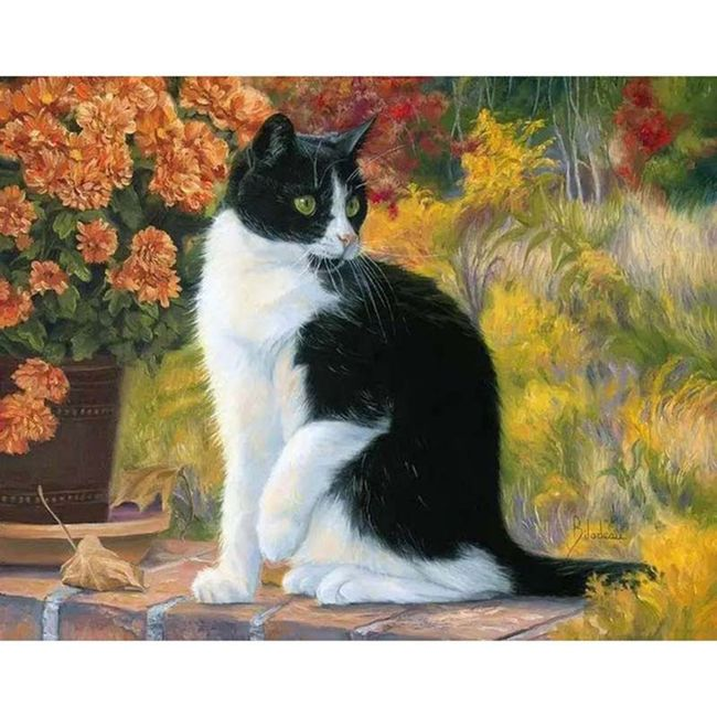 DIY obraz s kočkou - 40x50 cm 1