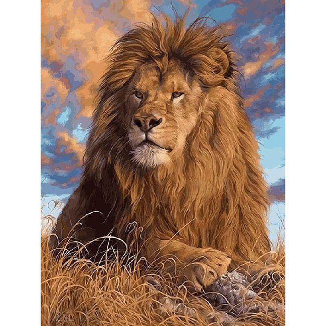 DIY obraz k vybarvení - lev 1
