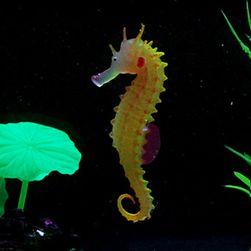 Akvarijní dekorace - mořský koník