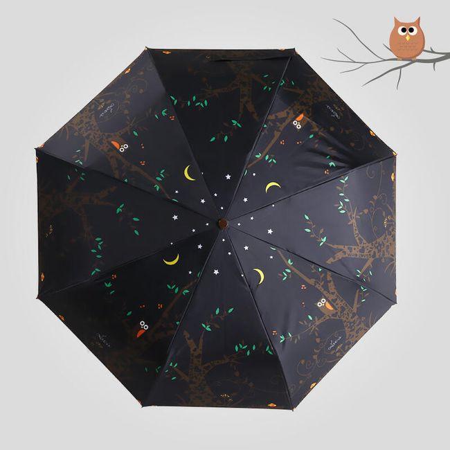 Pohádkový deštník - Les ožívá v noci 1