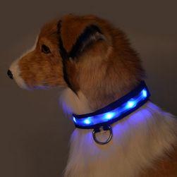 LED svítící obojek pro psy - 5 barev