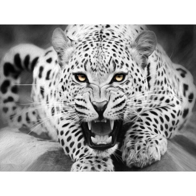 DIY obraz s leopardem 1