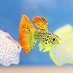 Umělá rybka ve zlaté barvě