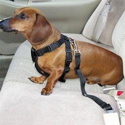 Bezpečnostní pás pro psy - 7 barev