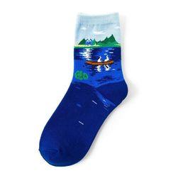 Dámské ponožky B05543